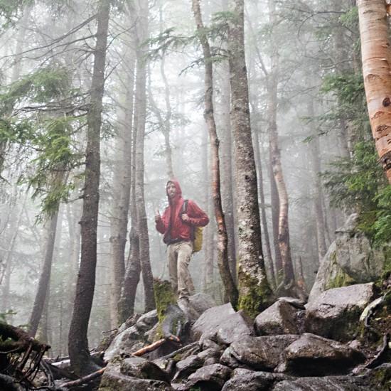 bosque5